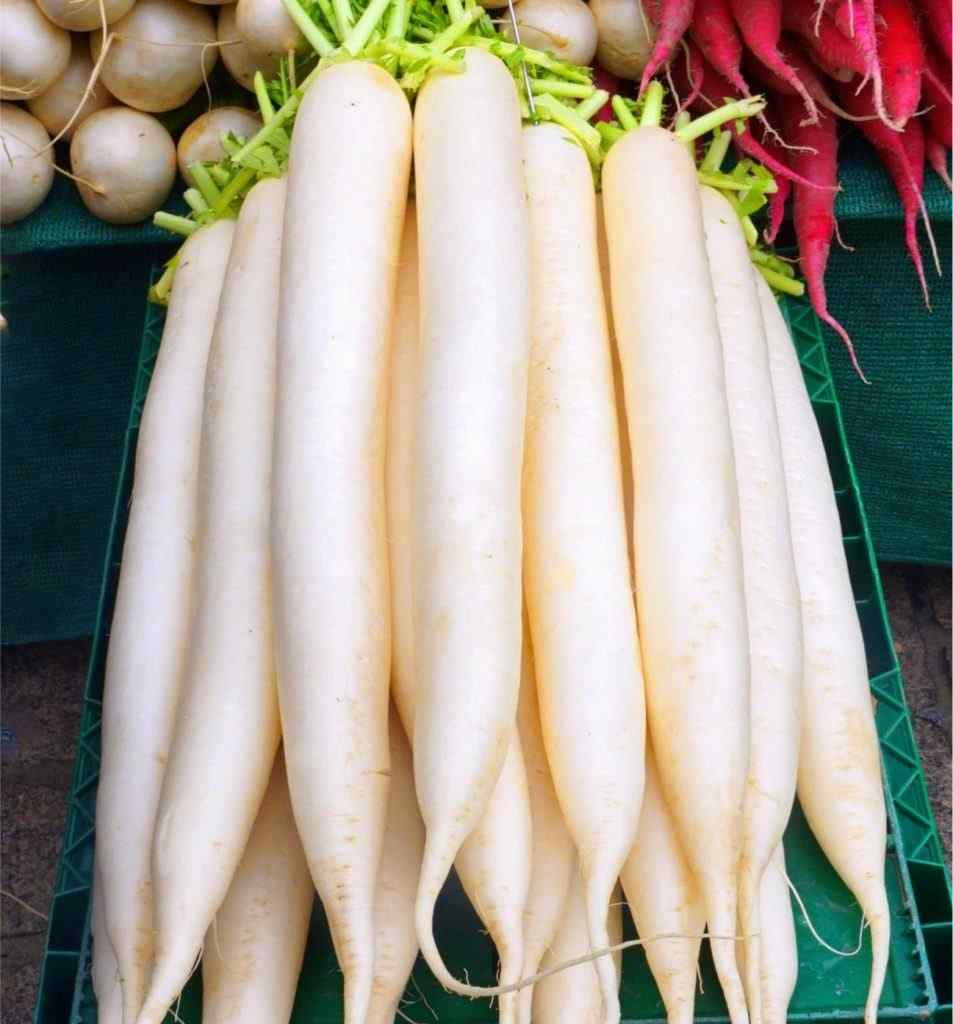 White Radish - Health Benefits and Nutrition Facts