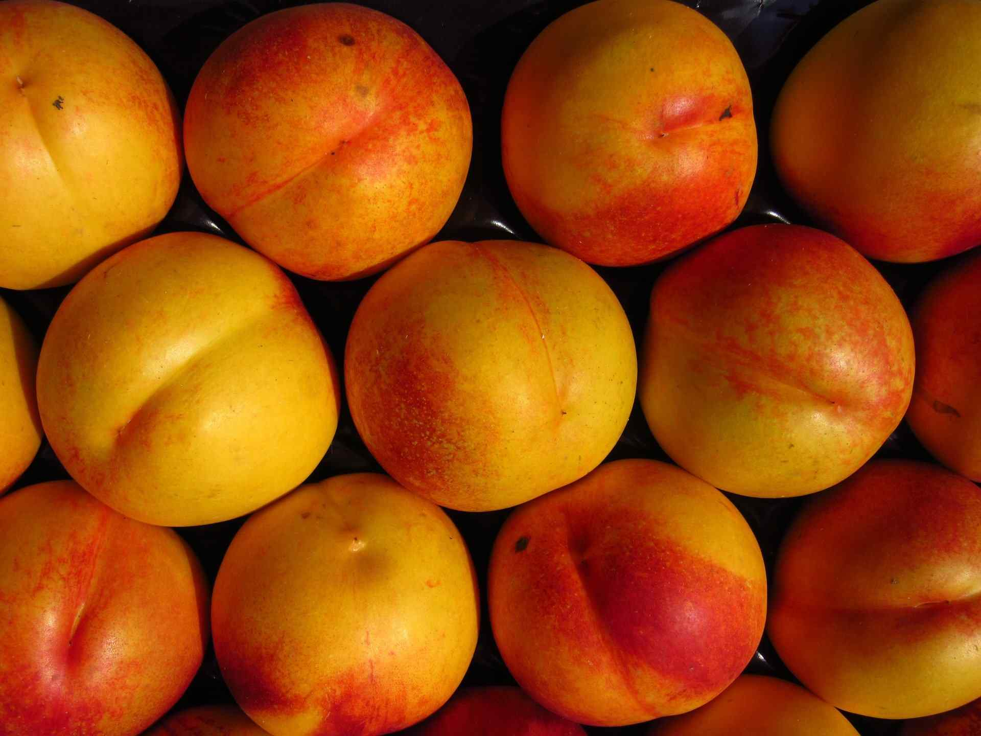 Nectarine: Health Benefits And Nutrition Facts